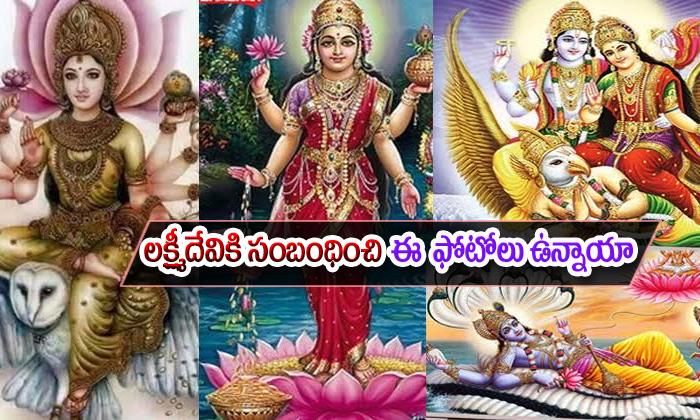 Lakshmi Devi Photos Importance--Lakshmi Devi Photos Importance-