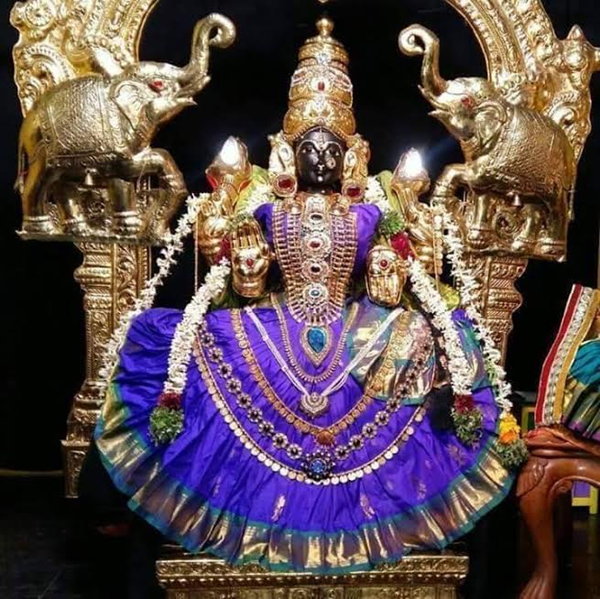 Mayiladuthurai Priests Adorn Idol With Salwar Kameez-