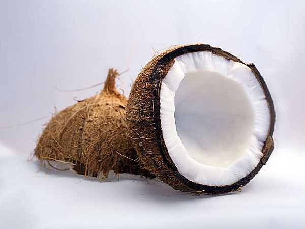 UNknown Facts About Indian Coconut-