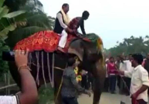 The Deputy Speaker Falls Off Elephant At Assam-