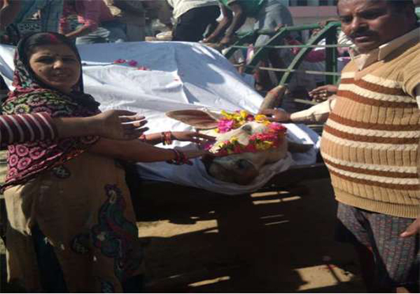 Ox Was Daied Villege Peoples Are Funeral At Uttarapradesh-