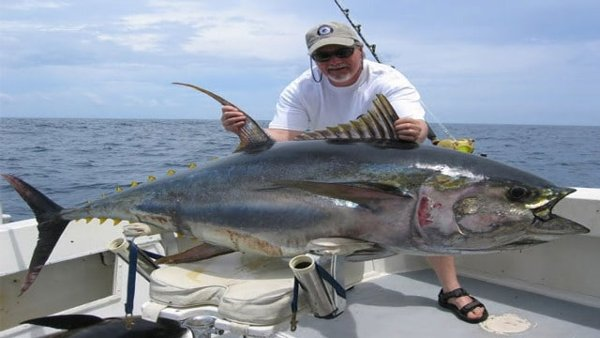 Endangered Tuna Sold For Rs 21 Crore In Japan World's Most-prized Fish-Japan Rs Fish World\'s