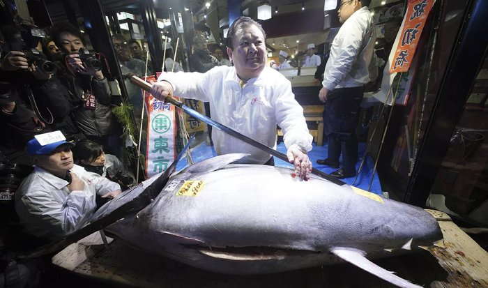 Endangered Tuna Sold For Rs 21 Crore In Japan World's Most-prized Fish-Japan Fish