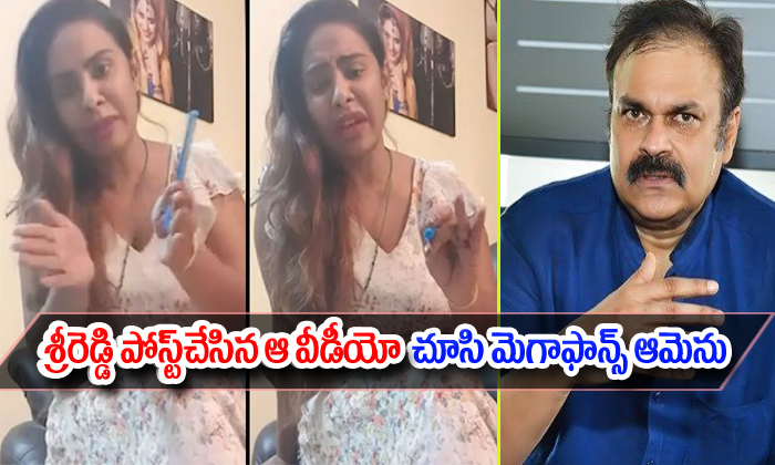 Sri Reddy Released A Video About Nagababu And Pawan Kalyan--Sri Reddy Released A Video About Nagababu And Pawan Kalyan-