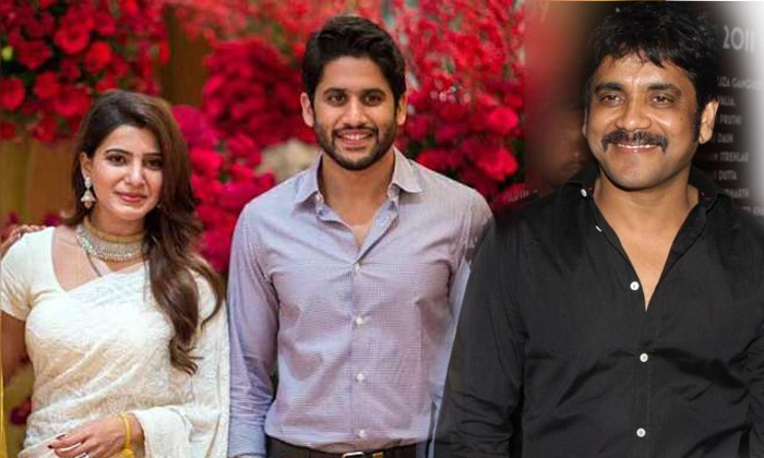 Amala To Act In Nagarjuna\'s Manmadhudu 2 Movie--Amala To Act In Nagarjuna's Manmadhudu 2 Movie-