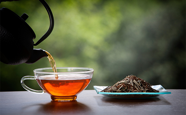 Drinking Tea Regularly May Lower Fracture Risk-Drinking Lower Risk Peking University Scientist