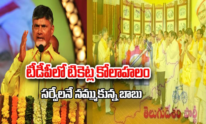 Festival In Tdp Candidates Tickets Distribution In Ap--Festival In TDP Candidates Tickets Distribution AP-