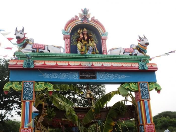 Mutton Biryani As Prasad In Chennai Sri Muniyandi Swami Temple-Chennai Temple Mutton What