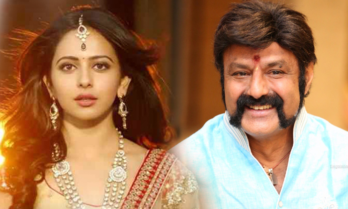 Rakul Preet To Romance Balakrishna In Boyapati Direction-Boyapati Movie Nandamuri Fans Singh