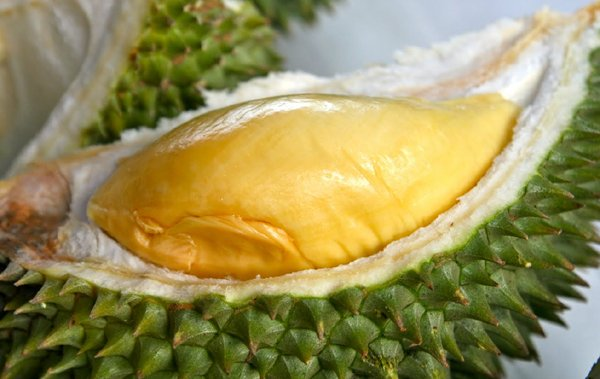 Things You Need To Know About Durian Fruit-Durian Fruit King Of Southeast Asia