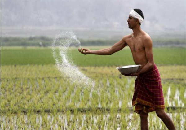 Rbi Raises Collateral Free Farm Loan Limit-