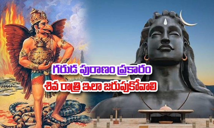 You Must Know About Festival Maha Shivaratri As Per Garuda Puranam--You Must Know About Festival Maha Shivaratri As Per Garuda Puranam-