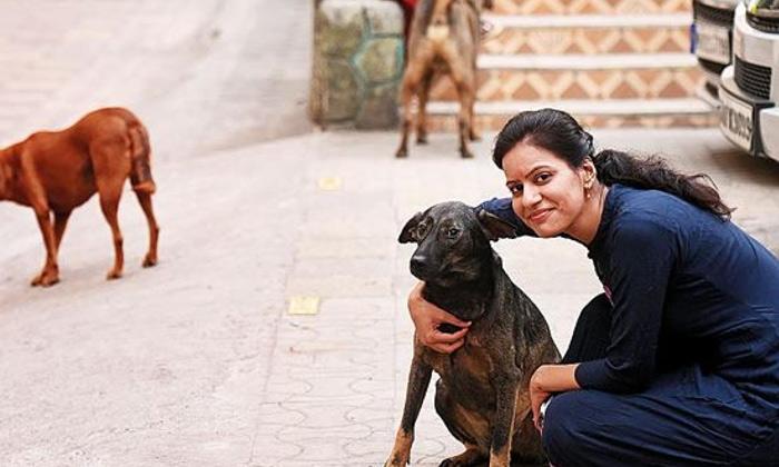 3.5 Lakhs Fine For Feeding Street Dogs-3.5 Colony Dogs Feeding Fine General Telugu Updates Mumbai Street Water