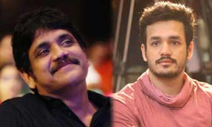 Akhil In Bangar Raju-Bangar Raju Direction Kalyan Krishna Movie Updates Nagarjuna