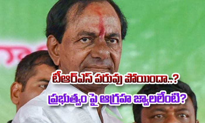 In Telangana Does Trs Lost Dignity--In Telangana Does TRS Lost Dignity-