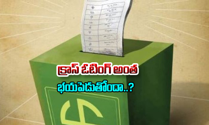 Does Cross Voting Makes Scared--Does Cross Voting Makes Scared-
