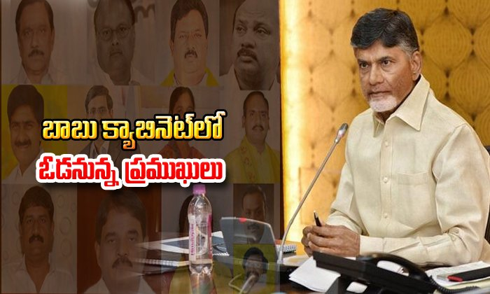 Losers In Andhra Pradesh Elections From Tdp--Losers In Andhra Pradesh Elections From TDP-