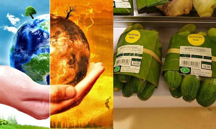 Supermarket Praised For Replacing Plastic Packaging With Banana Leaves--Supermarket Praised For Replacing Plastic Packaging With Banana Leaves-