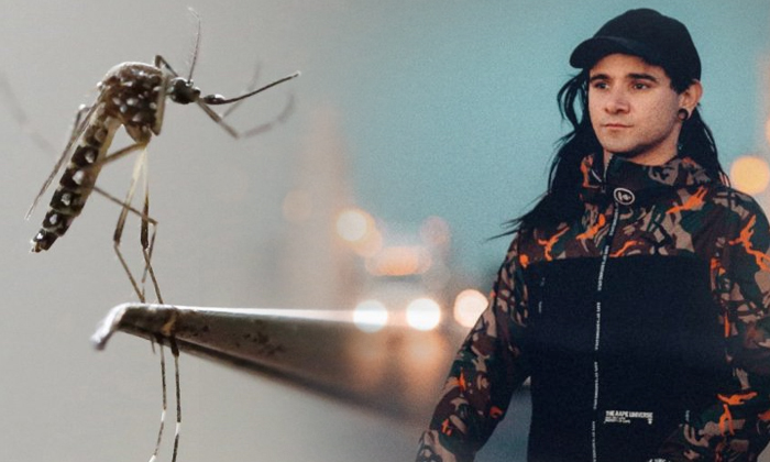 Want To Get Rid Of Mosquitoes Play Them Some Skrillex--Want To Get Rid Of Mosquitoes Play Them Some Skrillex-