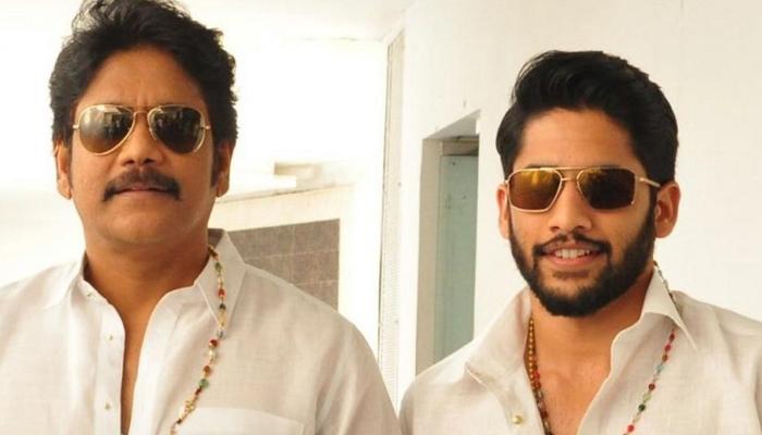 Good News For Akhineni Nagarjuna Fans Bangarraju Latest Upadate--Good News For Akhineni Nagarjuna Fans Bangarraju Latest Upadate-