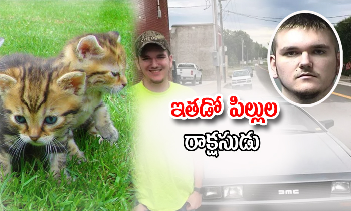 Man Adopted Cats Off Craigslist, Then Tortured And Killed Them--Man Adopted Cats Off Craigslist Then Tortured And Killed Them-