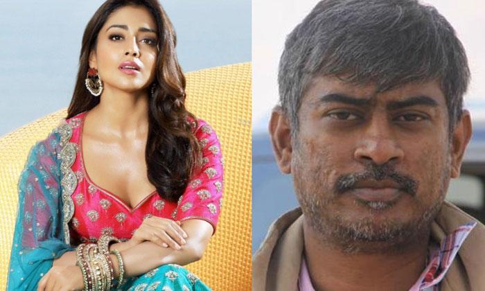 Shriya Saran Play A Mother Role In Chandra Sekhar Yeleti Movie--Shriya Saran Play A Mother Role In Chandra Sekhar Yeleti Movie-
