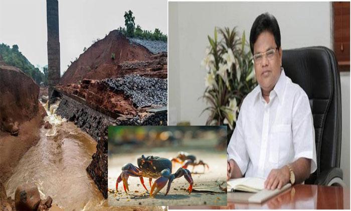 Maharashtra Minister Blames Crabs For Dam Breach That Killed 14--Maharashtra Minister Blames Crabs For Dam Breach That Killed 14-