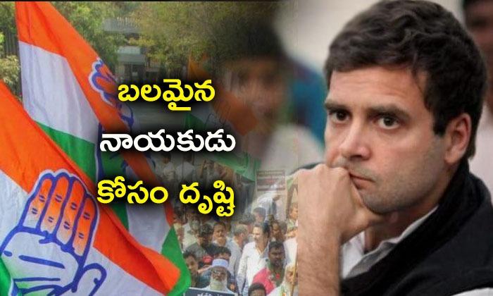 No Consensus Decision On Rahul Gandhi\'s Replacement As Congress--No Consensus Decision On Rahul Gandhi's Replacement As Congress-