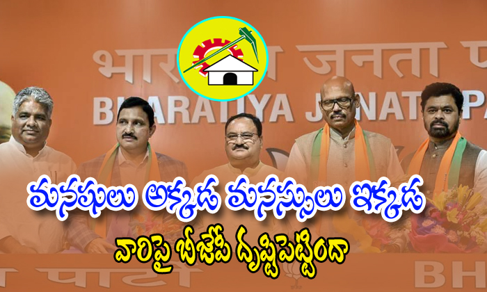 Bjp Party Focus On Tdp Leaders Join In Bjp Party-bjp Party,telugudesham Party,ycp,ys Jagan Mohan Reddy-Bjp Party Focus On TDP Leaders Join In Party-Bjp Telugudesham Ycp Ys Jagan Mohan Reddy