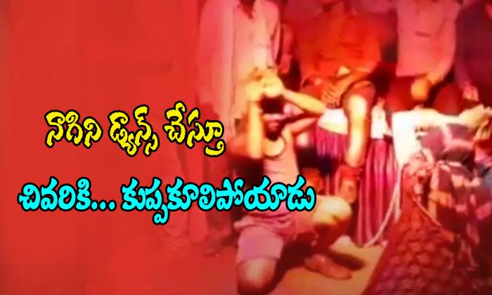 Mp Man Dies While Doing Nagini Dance During Ganapati Visarjan-mp Man,senoyi Village-MP Man Dies While Doing Nagini Dance During Ganapati Visarjan-Mp Senoyi Village
