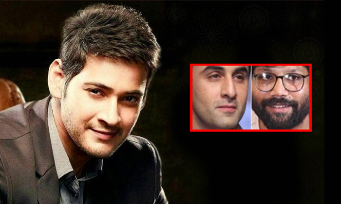 Mahesh Babu Movie Line Goes Bollywood For Ranbir Kapoor-kabeer Singh Movie Director,mahesh Babu,ranbir Kapoor,telugu Tollywood Box Office-Mahesh Babu Movie Line Goes Bollywood For Ranbir Kapoor-Kabeer Singh Director Mahesh Ranbir Kapoor Telugu Tollywood Box Office