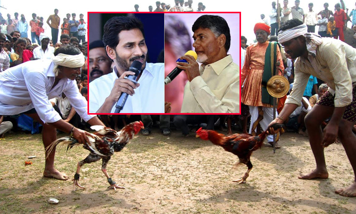 What Is The Political Issue In Palnadu Fighting-cm Ys Jagan,palnadu,political Issue In Palnadu,tdp,ys Jagan,ysrcp-What Is The Political Issue In Palnadu Fighting-Cm Ys Jagan Palnadu Political Tdp Ys Ysrcp