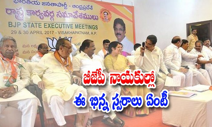 Ap Bjp Leaders Different Voice Speech About Tdp And Chandrababu Naidu-ap Tdp Party,chandrababu Naidu,chandrababu Naidu Again Start Friendship With Bjp Party,kanna Laxminarayana Comments On Chandrababu Naidu-AP BJP Leaders Different Voice Speech About TDP And Chandrababu Naidu-Ap Tdp Party Chandrababu Naidu Again Start Friendship With Bjp Kanna Laxminarayana Comments On