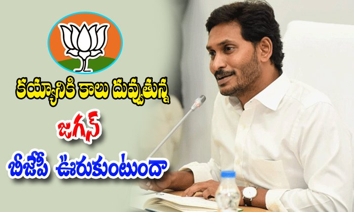 Ap Bjp Party Shows The Mistakes Against The Jagan Governament-jagan,jagan Fighting With Bjp Party In Andhrapradesh,jagan Spped Up In His Ap Scheems,telugudesham Party Also Fight On Bjp-AP Bjp Party Shows The Mistakes Against Jagan Governament-Jagan Jagan Fighting With In Andhrapradesh Spped Up His Ap Scheems Telugudesham Also Fight On