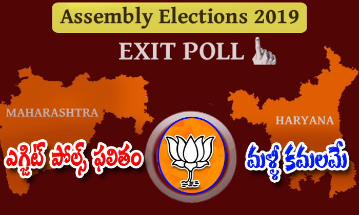 Exit Polls Results Show In Bjp Side-exit Polls Results,maharastra And Hariyana Assembly Elections Congress And Bjp Stand There-Exit Polls Results Show In BJP Side-Exit Maharastra And Hariyana Assembly Elections Congress Bjp Stand There