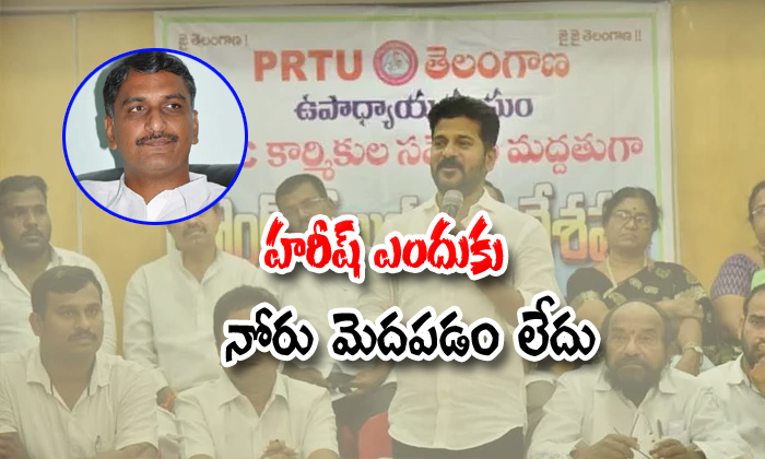 Revanth Reddy Comments On Harish Rao And Cm Kcr-formar Rtc Incharge Harish Rao Silent,revanth Reddy,telangana Cm Kcr-Revanth Reddy Comments On Harish Rao And Cm KCR-Formar Rtc Incharge Silent Revanth Telangana Kcr