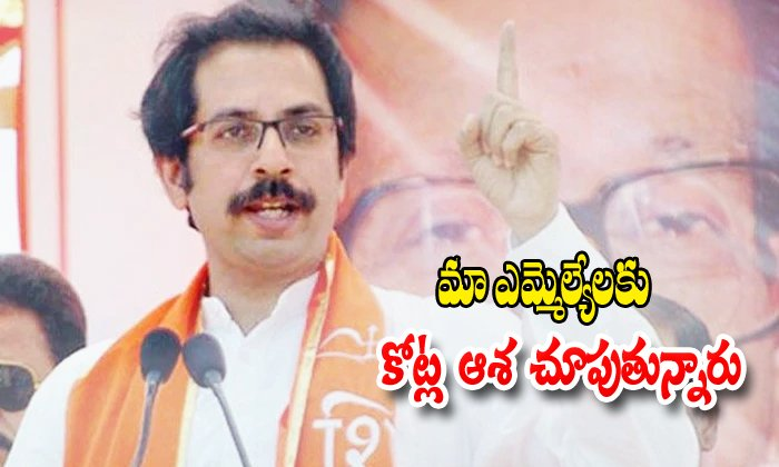 Siva Sena Chief Comments On Bjp Party Leaders-maharastra Elections,siva Sena-Siva Sena Chief Comments On BJP Party Leaders-Maharastra Elections