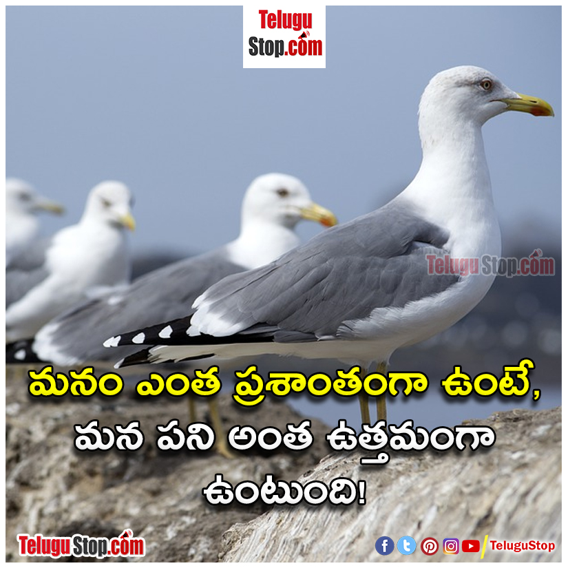 Telugu quotes in life inspirational quotes