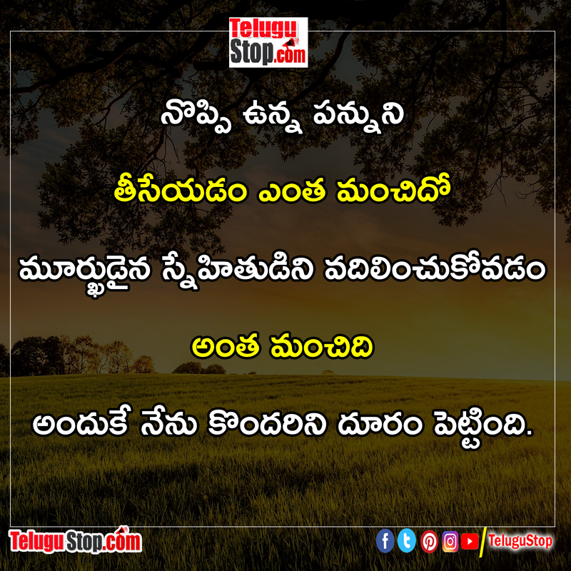 Stupid friends relation quotes in telugu Inspirational Quote