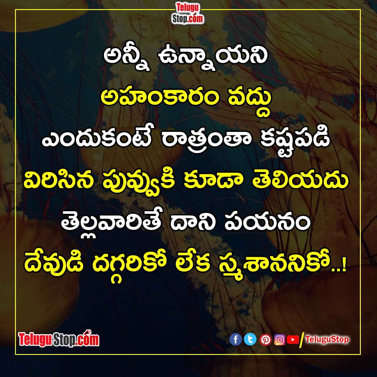 Do Not Be Arrogant Inspiriational Quotes-అహంకారంతో ఉండకండి ప్రేరణ కోట్స్-Inspirational Storys-Telugu Tollywood Photo Image-TeluguStop.com