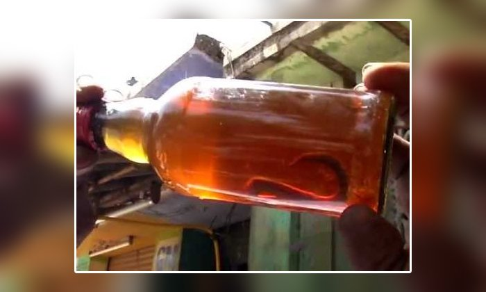 Telugu Government Wine Shop, Liquer Shop, Liquor Bottle, Snake, Snake In Wine Bottle, Social Media, Suresh, Tamilnadu, Viral Latest, Viral News, Wine Bottle-Latest News - Telugu