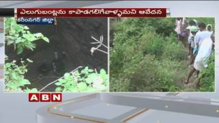 3 Bears died after falling into Irrigation Well (04-10-2016)