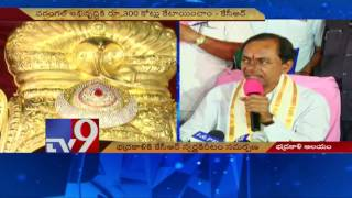 CM KCR offers golden crown to Goddess Bhadrakali – TV9. Photo,Image,Pics