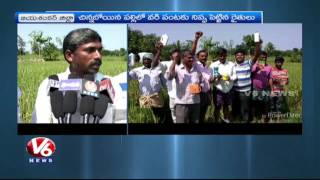 Farmers Put Fire To Paddy Crop In Jayashankar District | V6 news. Photo,Image,Pics