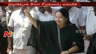 Jayalalitha Health : AIADMK Actvists Feel Happy For Fast Health Recovery || TamiNadu
