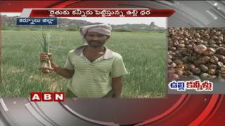 Onions makes farmers cry | Kurnool district (20-10-2016)