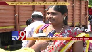 Custard apple sales up in Karimnagar – TV9