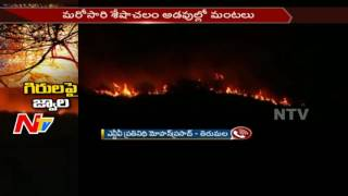 Fire Department Backstep to Control Fire in Seshachalam Forest || AP || NTV