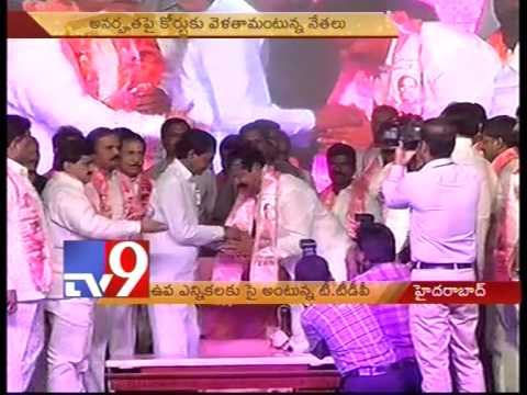 T-TDP looks forward to By elections after MLC poll win – Tv9 Photo Image Pic