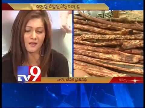 Actress Neetu Agarwal arrested in red sanders smuggling case – Tv9